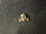 Theta Nu Epsilon pin