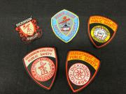 Department of Public Safety patches
