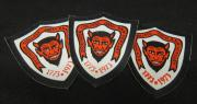 200th Anniversary Patches, 1973