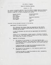Lily White & Company Board of Directors Meeting Minutes - 1992