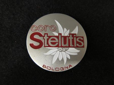 Coro Stelutis Male Choir Button, 1983