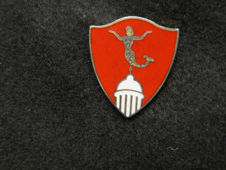 Reserve Officers Training Corps pin, c.1979