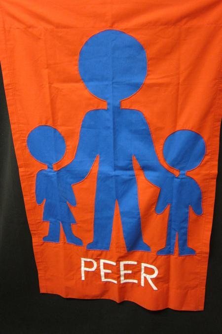 PEER Program flag
