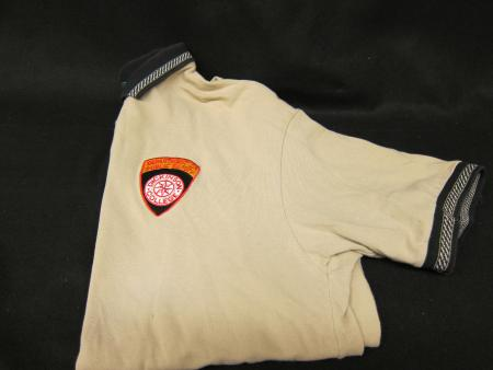 Department of Public Safety uniform polo