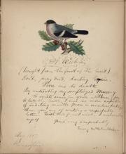 Autograph album, 1853 (Box 3, folder 04)