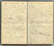 Diary, 1895 (Box 1, folder 5)
