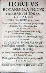 Hortvs Botanographicvs Herbarvm Ideas, Et Facies Svpra Bis Mille...