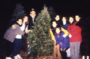 Students with a Christmas tree, c.1996
