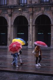 Colorful umbrellas in Bologna, 1996