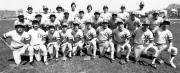 Baseball Team, 1981