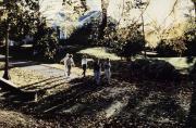 Benjamin Rush Campus, c.1985