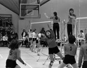 Volleyball tournament, 1980