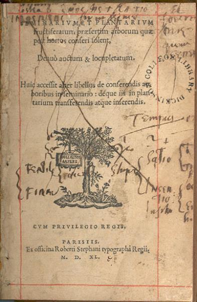 Seminarvm Et Plantarivm fructiferarum...